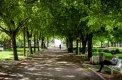 Fotografia: Medická záhrada, fotograf: Andrej Lenčucha, tagy: leto, medicka, zahrada