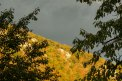 Fotografia: Ticho pred búrkou, fotograf: Matúš Michalko, tagy: les, skaly, západ slnka, mraky