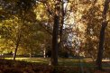 Fotografia: stromy v parku, fotograf: Denis Chropovský, tagy: 8