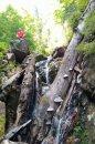 Fotografia: Martinské hole /original: https://goo.gl/MwQzmV, fotograf: Tomas Gloznek, tagy: turistika, meditacia, priroda, les