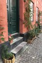 Fotografia: Budova so zelenými dverami, fotograf: Boris Cicák, tagy: kvety,schody