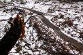 Fotografia: Pol roka po storočnej lavíne v Žiarskej doline., fotograf: Peter Vojtek, tagy: lavína, žiarska dolina, zváźanie dreva, západné tatry