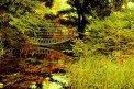 Fotografia: Zrkadlenie  a farebnosť v prírode, zátišie., fotograf: Lýdia Šimková, tagy: zrkadlenie, farebnosť, príroda