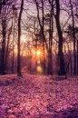 Fotografia: Západ slnka , fotograf: Martina Kolibášová, tagy: príroda, západ slnka,