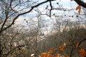 Fotografia: Krásy z kopca, fotograf: Martina Bešinová, tagy: príroda, hora, dedinka, kríky,